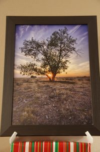 Prairie Tree Sunset Wall Art